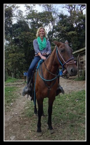 Encuentre mi caballo Whiskey